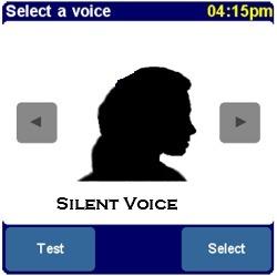 TomTom Stimmen